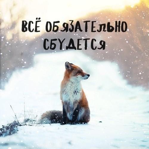 s18lyjzk83a.jpg