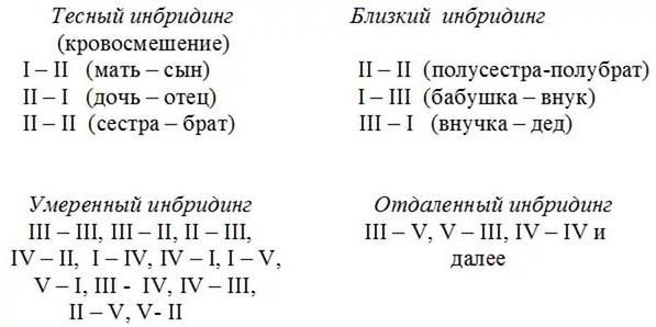novyytochechnyyrisunok6.jpg