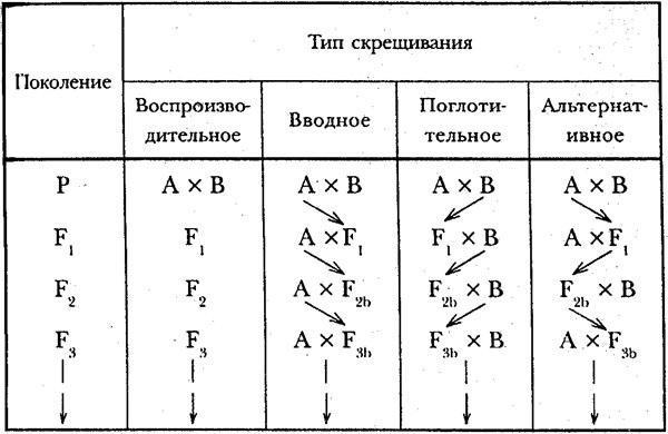 tipyskreshchivaniya.jpg
