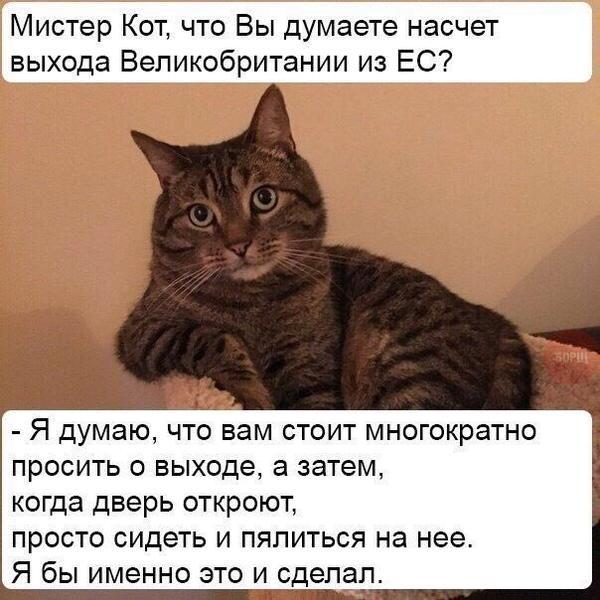 file589601.jpg