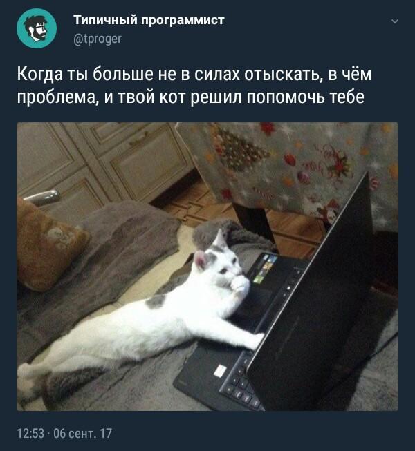 file591821.jpg