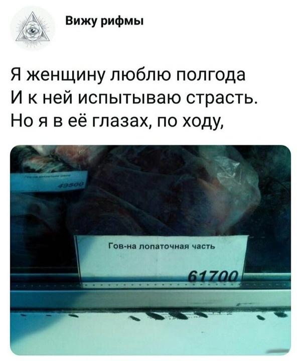 file604726.jpg