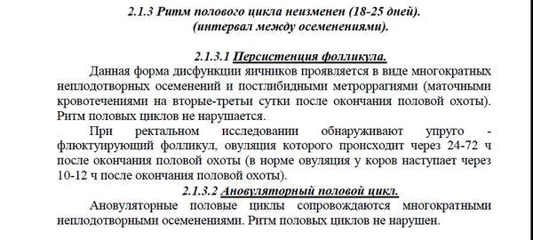 novyy-1.jpg