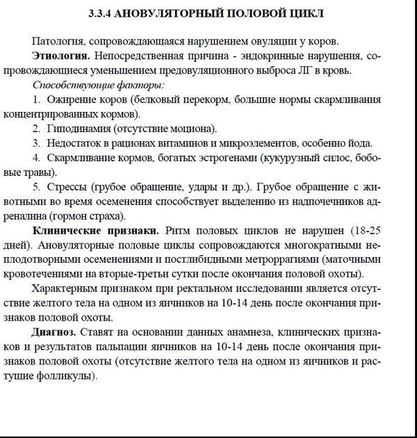 novyy-3.jpg