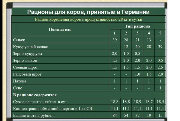 racion28litrov.png