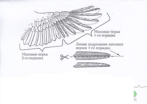 img-1.jpg