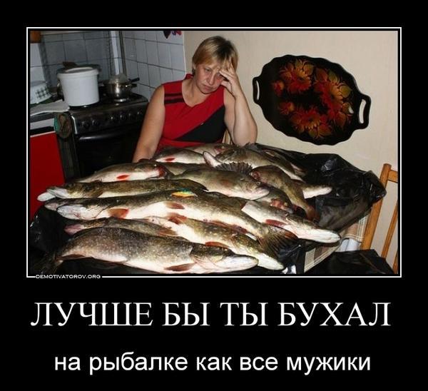 big1b65db890683ad1c229c0db00f69a17f.jpg