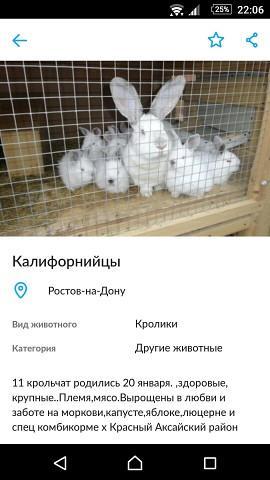 imagevu8aykg8.jpg