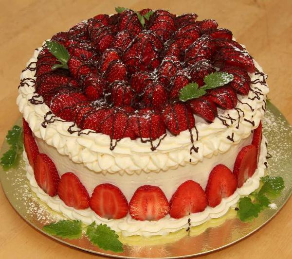 tortik.png