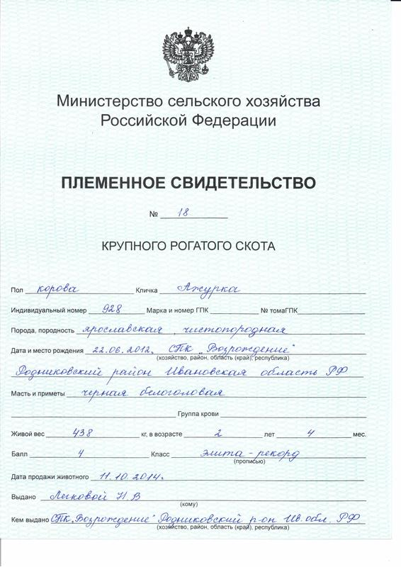 azhurka1.jpg