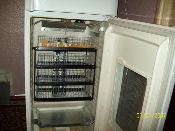 inkubator003.jpg