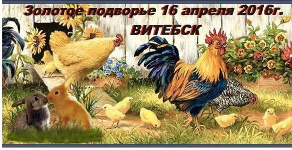 image281529.jpg
