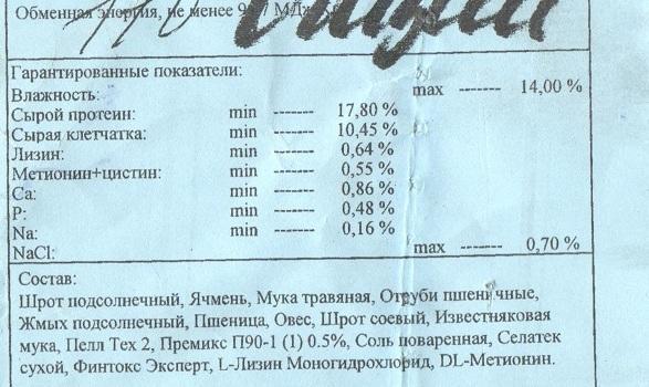 gatchinskiy001.jpg