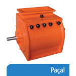 pacal.png
