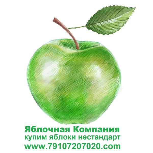 yablochnayakompaniya.jpg