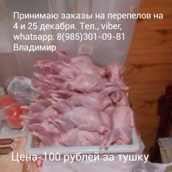 img201611011421151.jpg