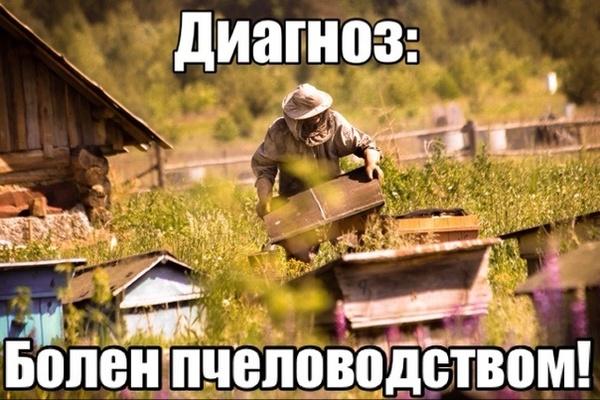 Аватар пользователя Арт-Мастер