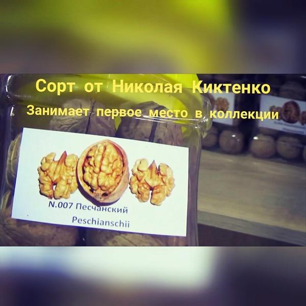 Аватар пользователя Михаил Грецкий