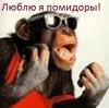 Аватар пользователя andostapenko