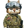 Аватар пользователя Luchnukov