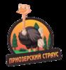 Аватар пользователя pr.straus