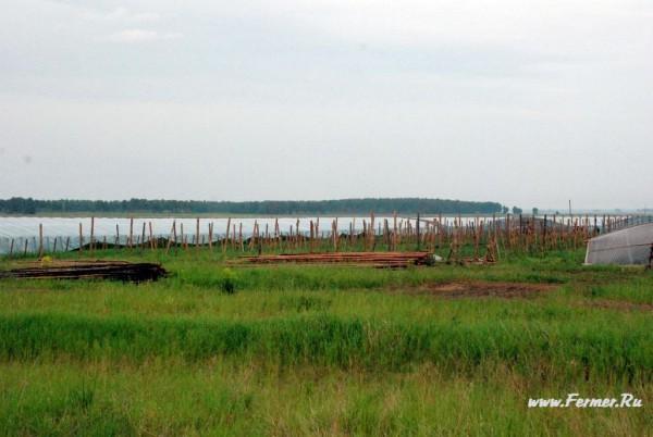 Погода в сентябре шадринск