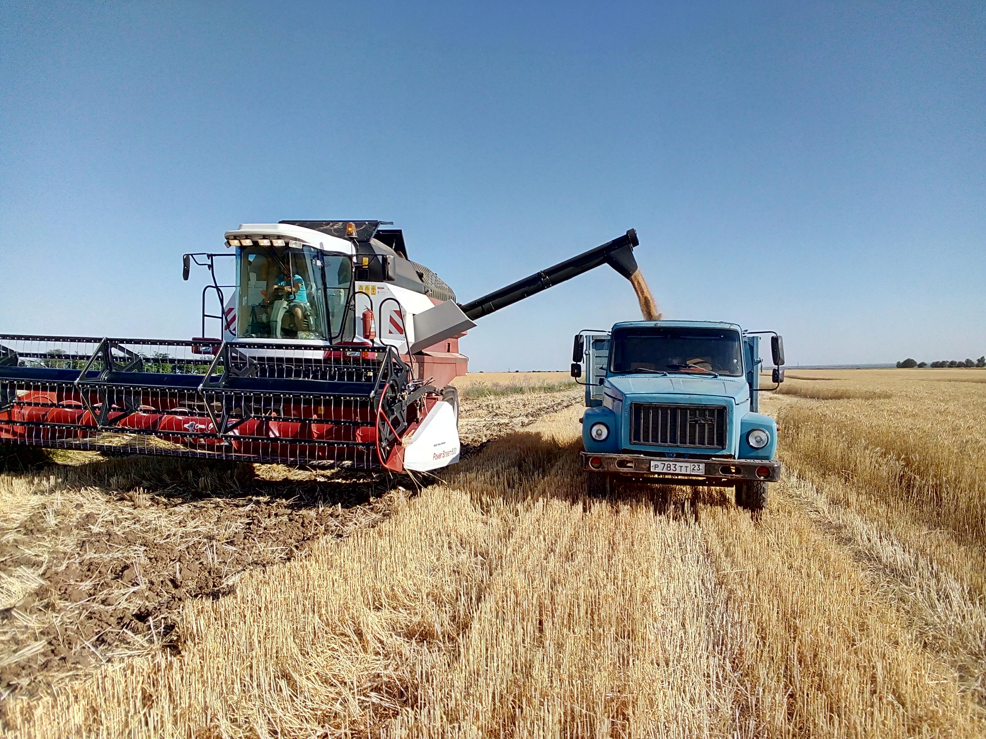 Картинка трактор сеет зерно