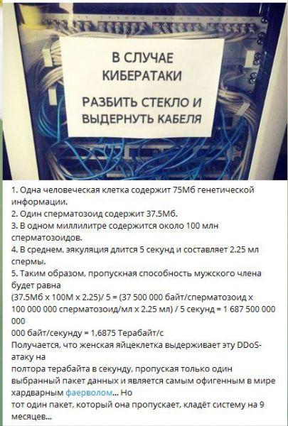 02x339.jpg