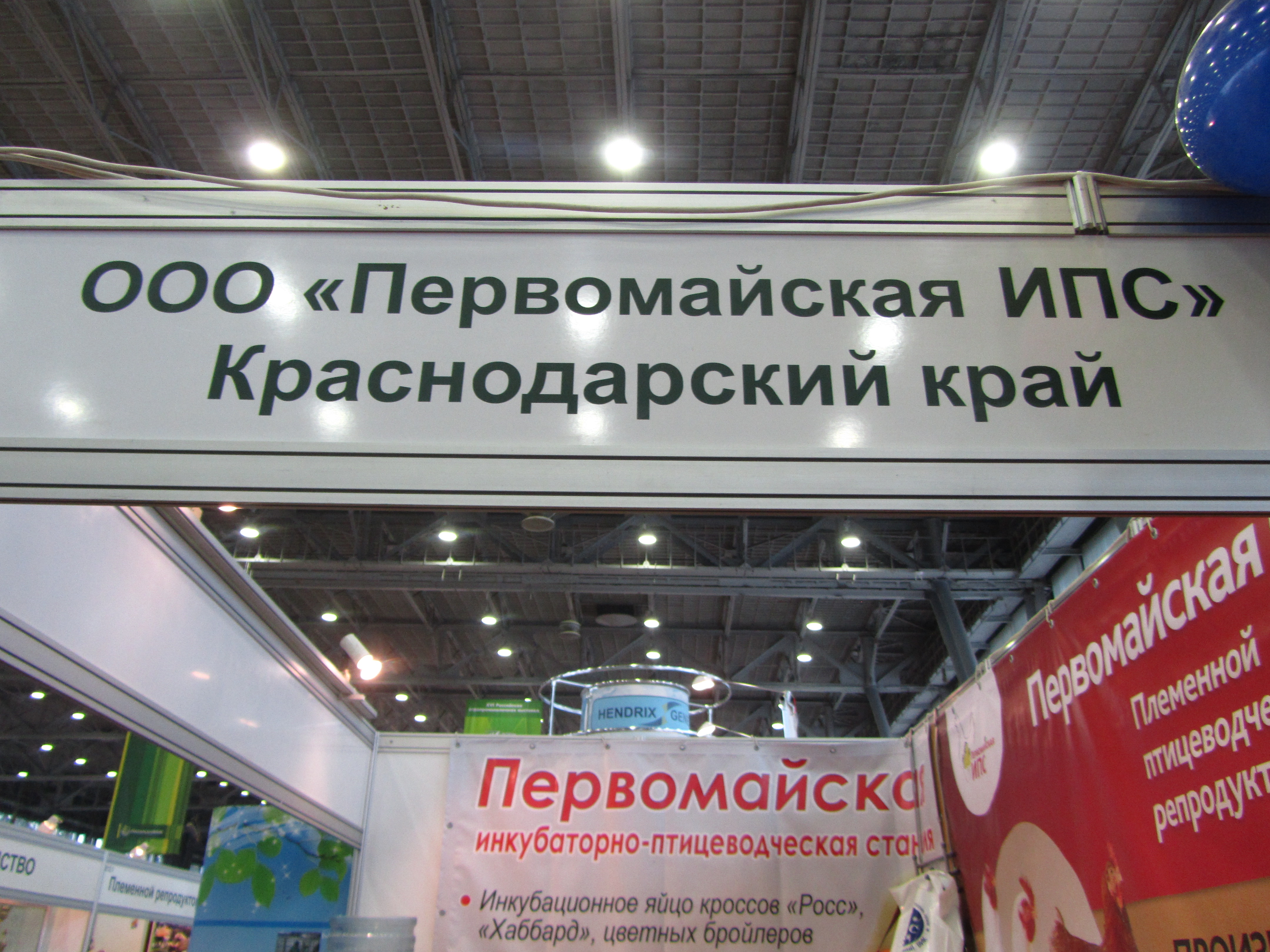 img6508.jpg