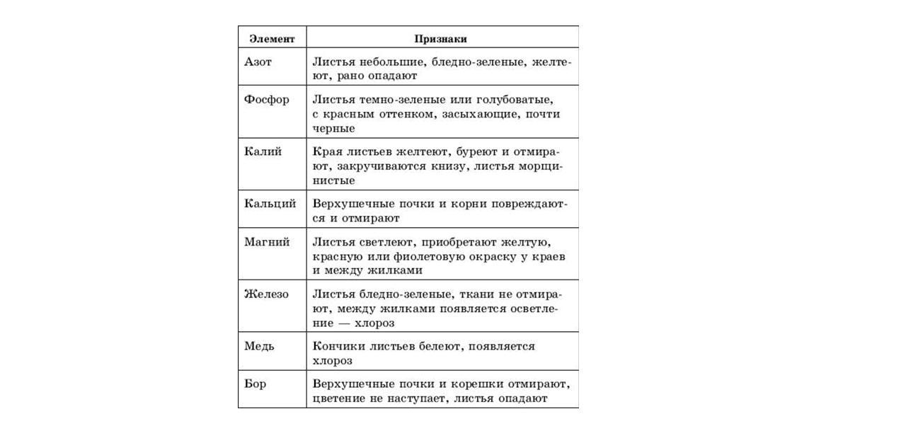 bezymya22.jpg