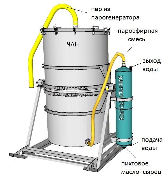 Как приготовить пихтовое масло