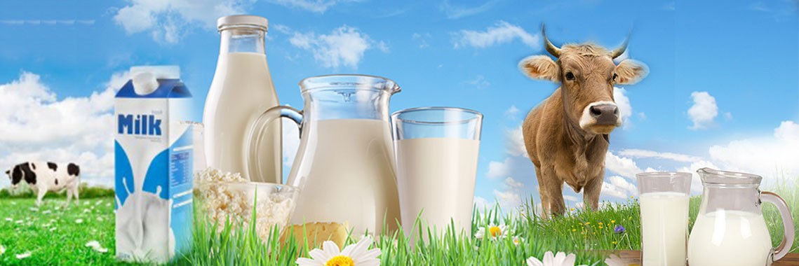 milk-products-exports-trader-india.jpg
