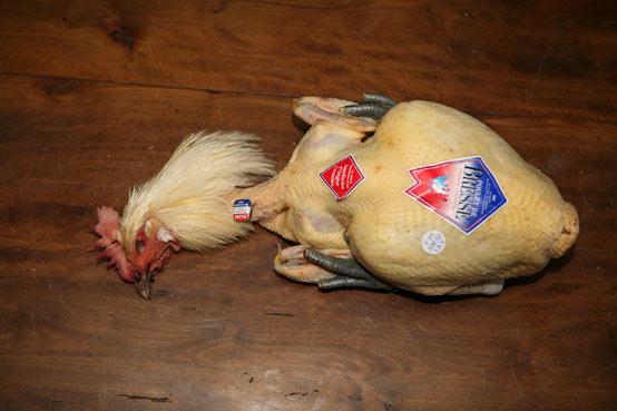 01-poulet-de-bresse.jpg
