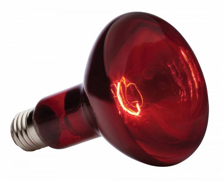 infraredglasslamp.jpg