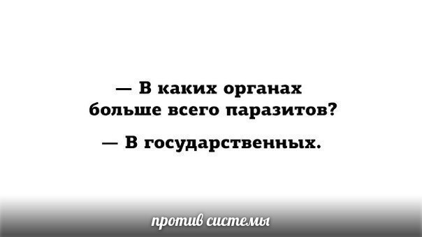 ilialit.jpg