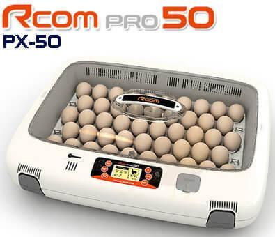 rcom50.jpg