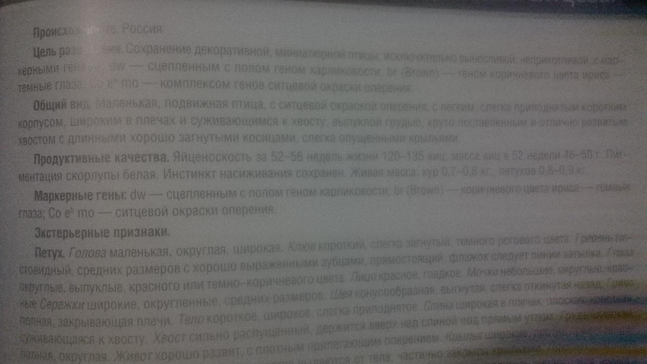 wp20141212133548smart.jpg