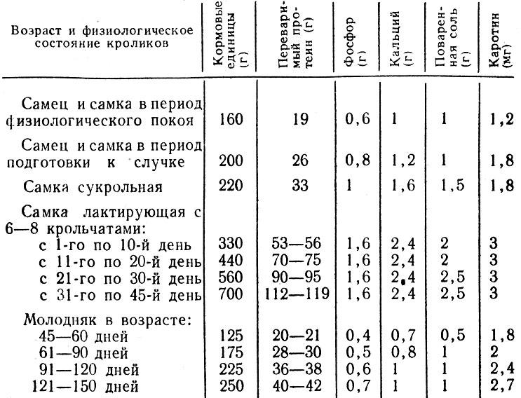 Таблица 1. Суточные нормы кормления кроликов крупных пород (на одну голову)