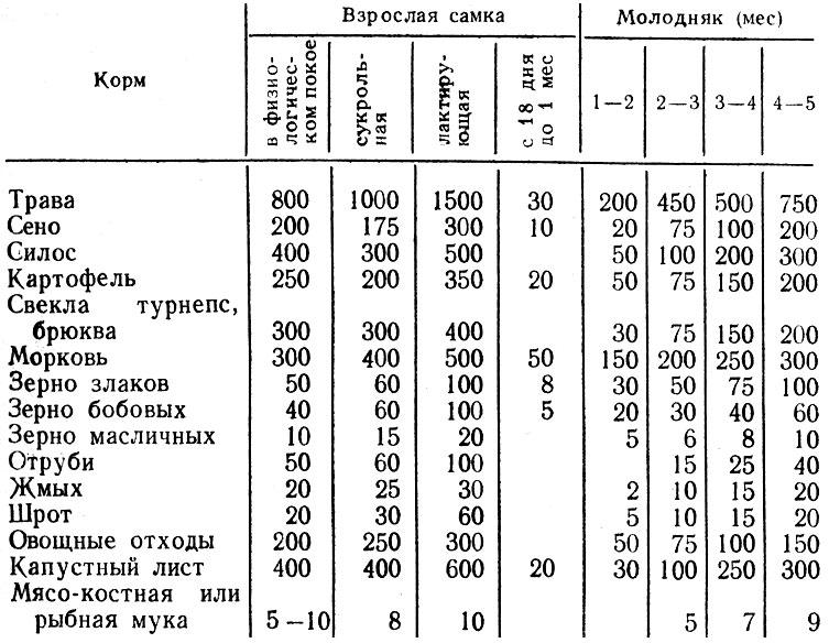 Таблица 4. Предельные суточные дачи некоторых кормов кроликам (г на голову)