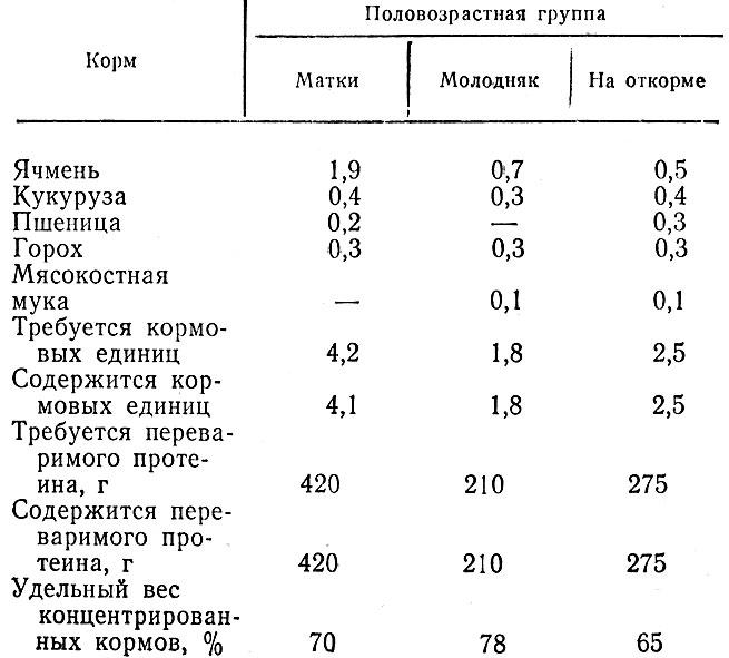 Таблица 6. Рационы для разных половозрастных групп свиней при малоконцентратном типе кормления (кг на голову в сутки)