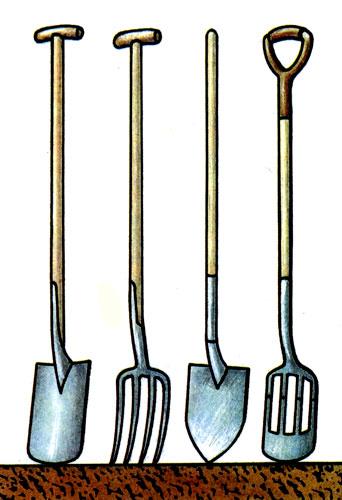 Среди орудий, предназначенных для обработки почвы, — лопаты различных типов: ровные, заостренные, вилообразные, комбинированные. Для удобства работы важна и форма рукоятки