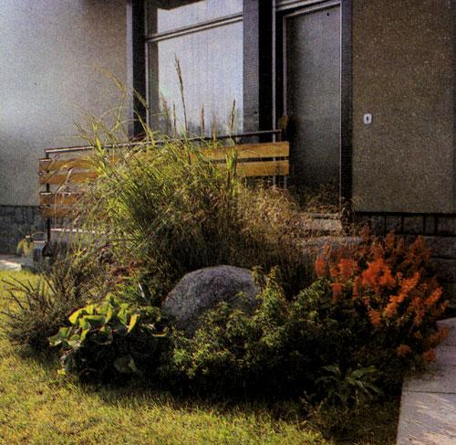 Группа древесных насаждений и многолетников с яркоцветущим летником — шалфеем (Salvia splendens), который занимает площадь газона вокруг ледникового валуна и образует у самого дома красивый уголок