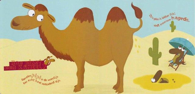 Верблюд делает доброе дело - создаёт SPA-комплексы для изнывающих от жары зверюшек.